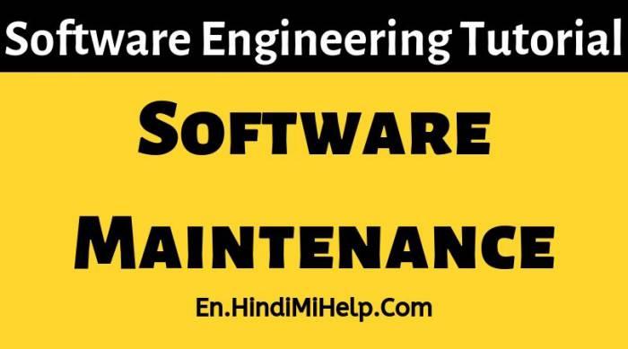 Software-Maintenance